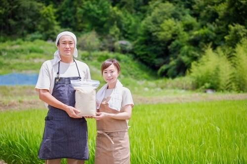 お米をつくる農家